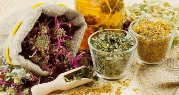 Jakie zioła zmniejszają apetyt